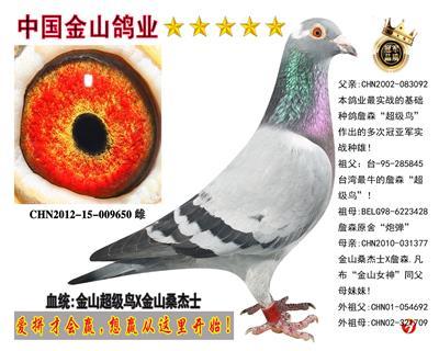 """金山詹森""""超级鸟""""X金山桑杰士!"""