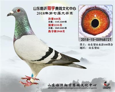 2018年山东翔宇公棚决赛440名