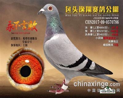 中国兆尊馆名鸽-逸翔决赛60名