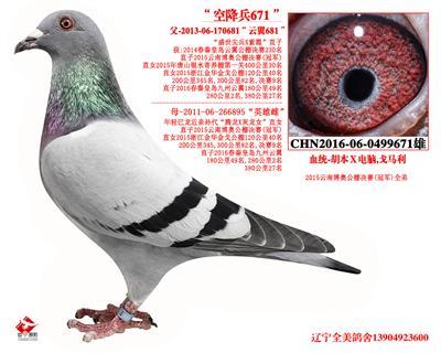 """""""空降兵671"""""""