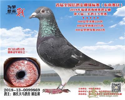 郭氏天马869