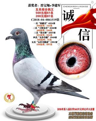2018年万柏林信鸽协会五关鸽王87名