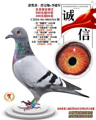 2018年万柏林信鸽协会五关鸽王68名
