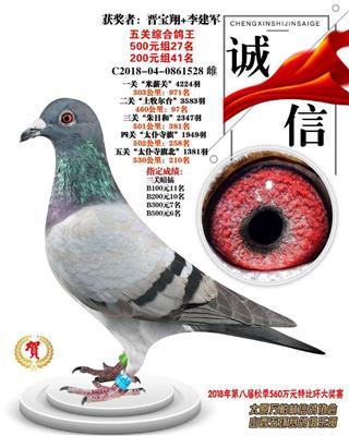 2018年万柏林信鸽协会五关鸽王41名