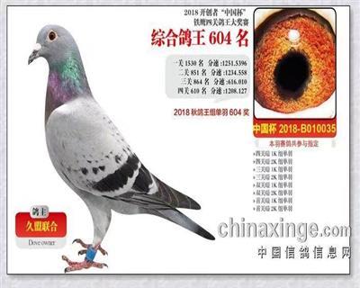 开创者中国杯铁鹰四关大奖赛604名