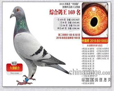开创者中国杯铁鹰四关大奖赛169名