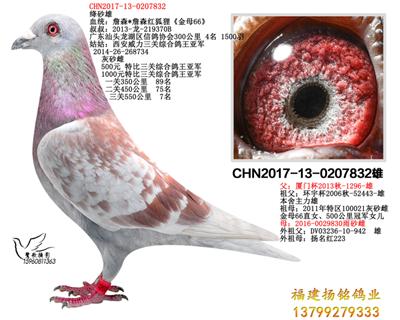 CHN2017-0207832