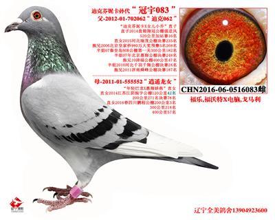 """迪克芬妮卡孙代""""冠宇083"""""""