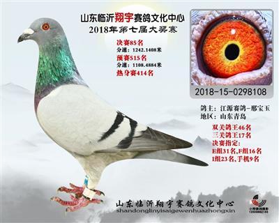 2018年山东翔宇公棚决赛85名