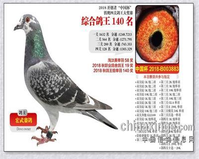 北京开创者赛鸽俱乐部鸽王140名