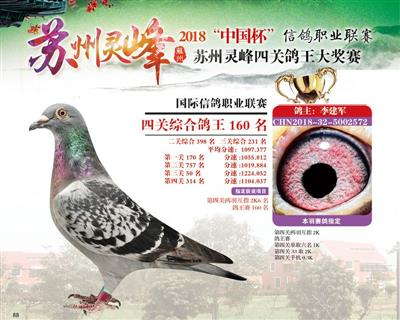苏州灵峰俱乐部四关鸽王160名