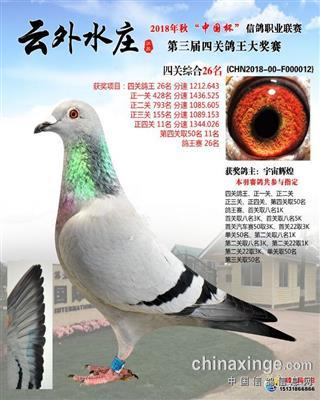 云外水庄四关综合26名