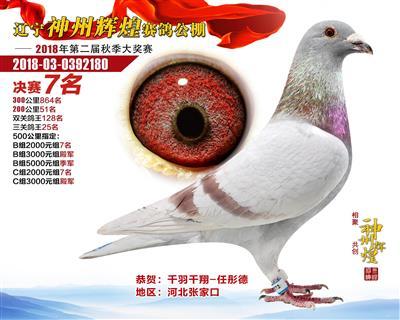 辽宁神州辉煌决赛7名