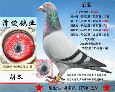 胡本7132