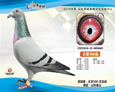 2018年山东舜峰公棚决赛164名