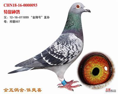 CHN18-16-0000093