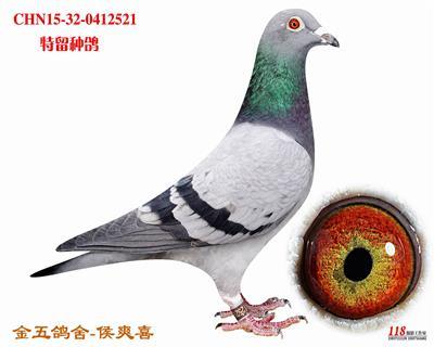 CHN15-32-0412521