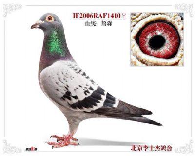 武高平410