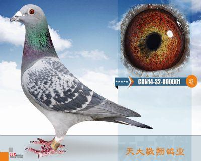 CHN14-32-000001