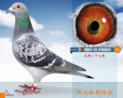 CHN17-32-0766641