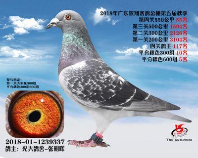 浓翔(55名)2018-01-1239337