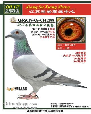 2017翔盛公棚季军多项指定冠军