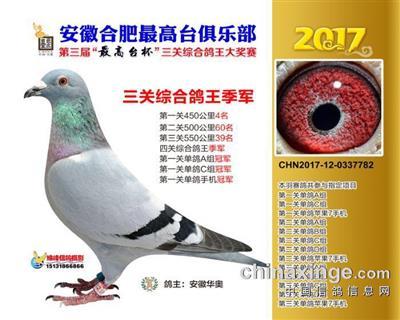 2017年最高台三关鸽王季军