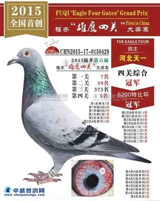 福齐四关总冠军
