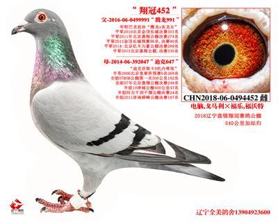 """""""翔冠452"""""""