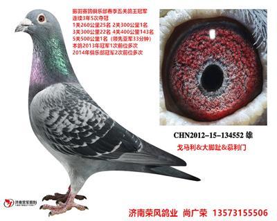 CHN2012-15-134552