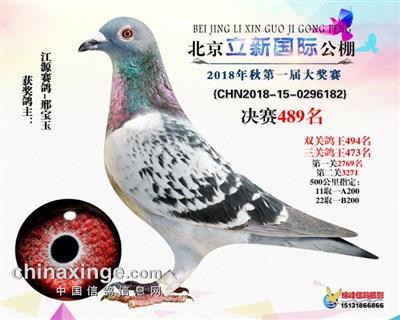 北京立新国际公棚决赛489名