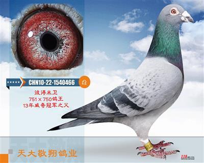 CHN10-22-1540466