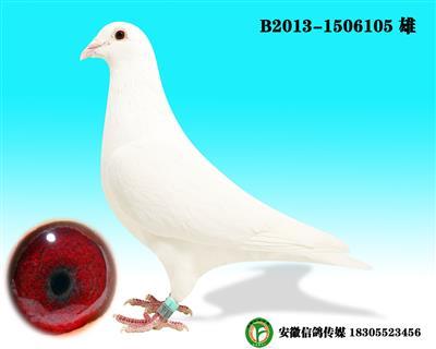 范格米内  B2013-1506105