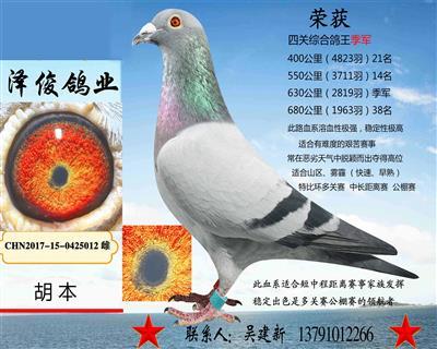 胡本5012
