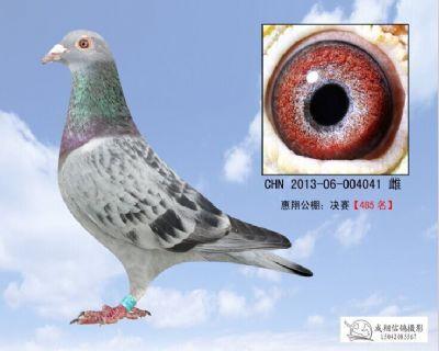 惠翔041