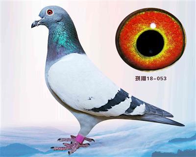 秘藏002
