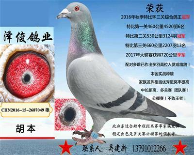 胡本7049