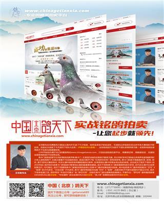 中国(北京)鸽天下、实战铭鸽拍卖