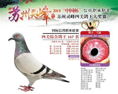 2018灵峰四关鸽王大奖赛167名