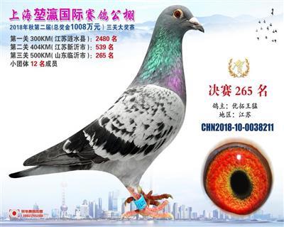 2018上海�矣�决赛265名