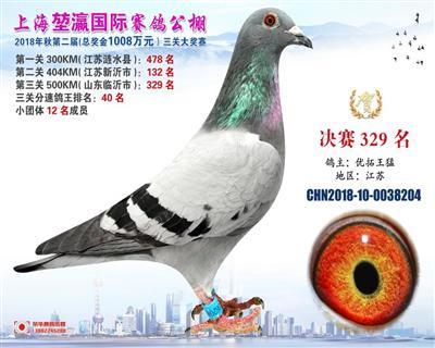 2018上海�矣�决赛329名