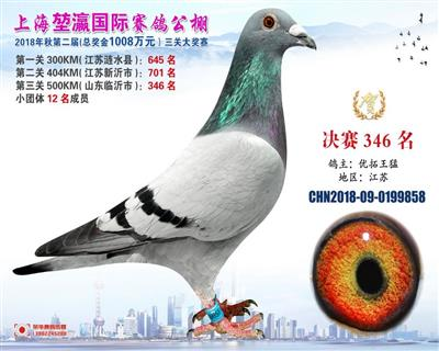 2018上海�矣�决赛346名