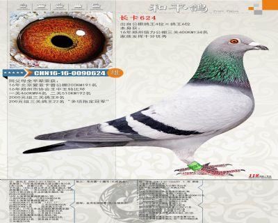 长卡CHN16-16-0090624