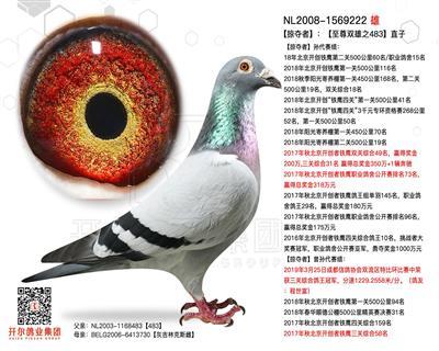 【掠夺者】 :【至尊双雄之483】直子!