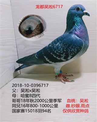 龙都吴淞6717