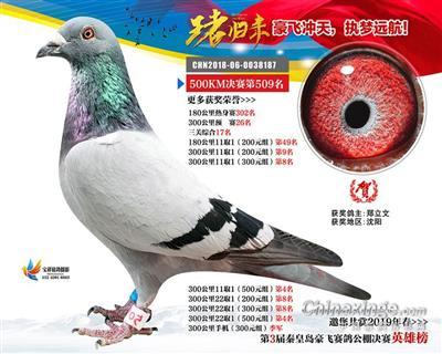 秦皇�u豪�w春棚三�P��王17名