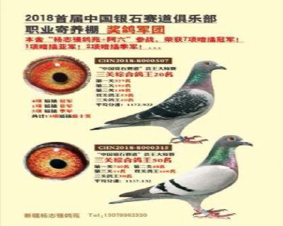 QQ图片20190510213027