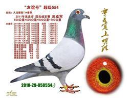 外祖父李军554