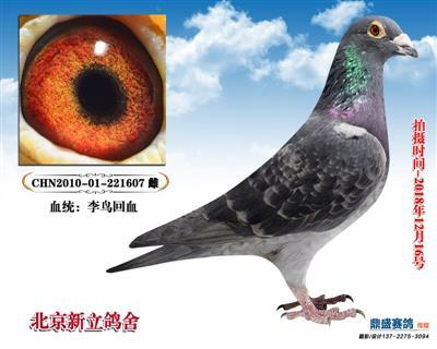吴淞【国之精粹】8888882010-0