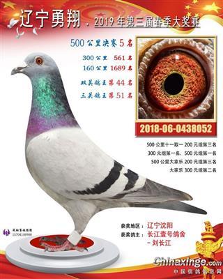 2019辽宁勇翔春棚决赛5名